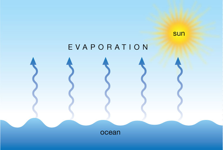 Image result for WATER CYCLE WITH EVAPORATION